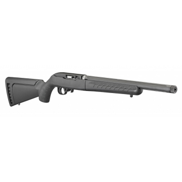 Ruger 10/22 - Takedown